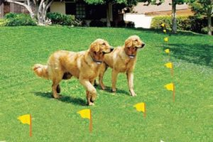 electric dog fences keep your best friend from running off while maintaining the aesthetic beauty of your landscape